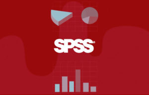 Modern Web Ideas statistika SPSS